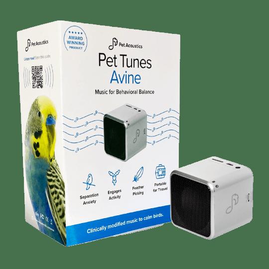 Calming music for Pet Birds